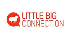 little-big-connection-outil sas collaboration saas france
